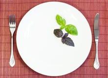 Weiße Platte mit Gabel und Messer Stockbilder