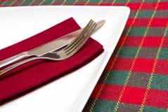 Weiße Platte mit grüner und roter Tischdecke lizenzfreies stockbild