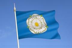 Weiße Rose von Yorkshire - Vereinigtem Königreich lizenzfreies stockbild