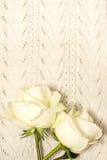 Weiße Rosen über gestrickter Beschaffenheit Stockfotografie