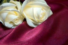 Weiße Rosen über Seide Stockbilder