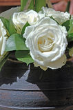 Weiße Rosen. Lizenzfreie Stockfotos