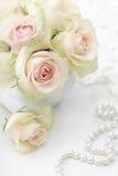 Weiße Rosen Stockfotografie