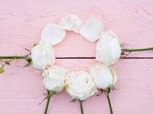 Weiße Rosen auf einem rosa hölzernen Hintergrund Stockfotografie