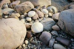 Weiße runde Kieselsteine Stockfoto