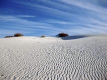 Weiße Sanddüne Stockfotografie