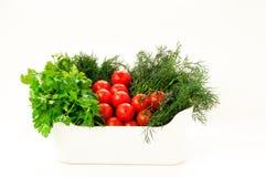Weiße Schüssel mit frischen Tomaten, Dill und Petersilie Stockbild