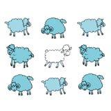 Weiße Schafe Lizenzfreies Stockfoto