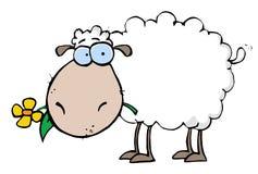 Weiße Schafe, die eine Blume in seinem Mund tragen Lizenzfreie Stockfotografie