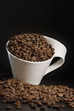 Weiße Schale mit Kaffeebohnen Stockfotos