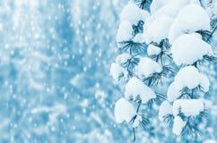 Weiße Schneeflocken auf einem blauen Hintergrund Lizenzfreies Stockfoto