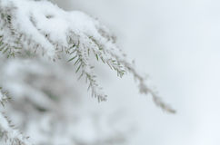 Weiße Schneeflocken auf einem blauen Hintergrund Lizenzfreie Stockfotos