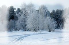 Weiße Schneeflocken auf einem blauen Hintergrund Weihnachts- oder des neuen Jahreshintergrund Winter Vorder Stockbilder