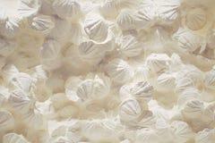 Weiße Seashells Stockbild