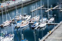 Weiße Segelboote angekoppelt in Seattle lizenzfreies stockbild