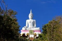 Weiße Statue großer Buddha Stockfotografie