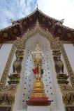 Weiße Stellung Buddha-Statue von Wat Saen Muang Ma Luang stockbild