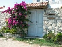 Weiße Tür mit Bouganvilla Stockfotografie
