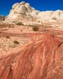 Weiße Tasche in Arizona, USA Stockbild