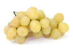 Weiße Trauben lizenzfreies stockbild