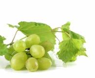 Weiße Trauben getrennt lizenzfreies stockbild