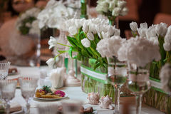 Weiße Tulpen lizenzfreies stockfoto