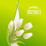 Weiße Tulpen auf einer Green Card für Geburtstag Lizenzfreie Stockbilder