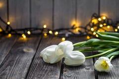 Weiße Tulpen auf hölzernem Hintergrund stockbilder