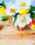 Weiße Tulpen in einem Korb stockfotos