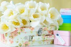 Weiße Tulpen und Geschenkkästen Stockfotos
