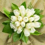Weiße Tulpenanordnung Lizenzfreies Stockfoto