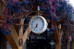 Weiße Uhr und Virginia-Kriechpflanze stockbild