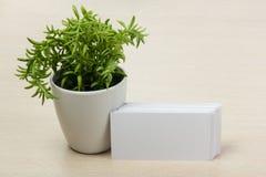 Weiße unbelegte Visitenkarte Bürotischschreibtisch mit Satz bunten Versorgungen, Schale, Stift, Bleistifte, Blume, Anmerkungen, K Stockfotos