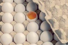 Weiße und braune Eier im Karton mit defektem Ei stockfoto