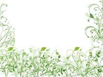 Weiße und grüne Beschaffenheit lizenzfreie abbildung