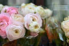 Weiße und hellrosa Butterblume Ranunculusblumen des schönen Blumenblumenstraußes mit Sahne stockbilder