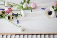 Weiße und rosa Blumen auf weißem Holz Stockfotos