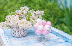 Weiße und rosa Eibische im runden Glasvase mit einem Korb der empfindlichen weißen Flieder Der horizontale Rahmen Lizenzfreie Stockfotografie