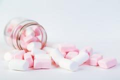 Weiße und rosa Eibische werden aus dem Glas heraus verschüttet stockfotos