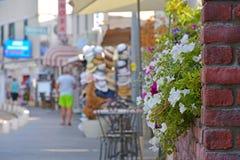 Weiße und rote Blumen, eine Backsteinmauer und eine Einkaufsstraße Stockfoto