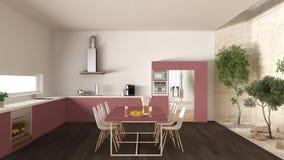 Weiße und rote Küche mit innerem Garten, minimale Innenarchitektur Lizenzfreie Stockbilder
