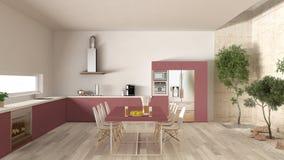 Weiße und rote Küche mit innerem Garten, minimale Innenarchitektur Lizenzfreies Stockbild