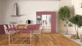Weiße und rote Küche mit innerem Garten, minimale Innenarchitektur Lizenzfreie Stockfotos