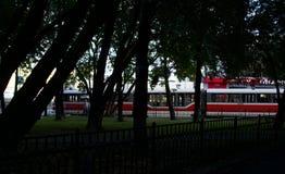 Weiße und rote Straßenbahn durch die Bäume stockfotos