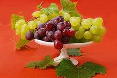 Weiße und rote Trauben Lizenzfreies Stockbild