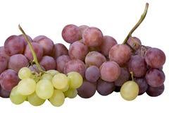 Weiße und rote Trauben Stockfotos