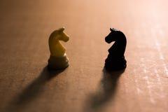 Weiße und schwarze Schachritter Lizenzfreies Stockfoto