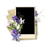 Weiße und violette Iris auf dem Papier stockfotos