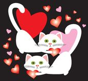 Weiße verliebte kleine Katzen Stockbild