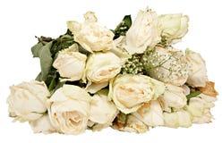 Weiße verwelkte Rosen Stockfotos